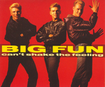 Big Fun - Can't shake the feeling