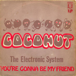The Electronic System - Coconut