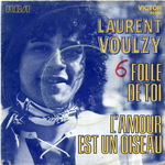 Laurent Voulzy - Folle de toi