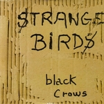 Black Crows - Strange birds