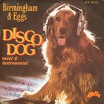 Birmingham and Eggs - Disco dog