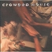 Vignette de Crowded House - Fall at your feet