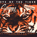 Pochette de Survivor - Eye of the tiger