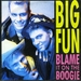 Vignette de Big Fun - Blame it on the boogie