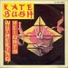 Pochette de Kate Bush - Wuthering heights