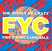 Vignette de Fine Young Cannibals - She drives me crazy